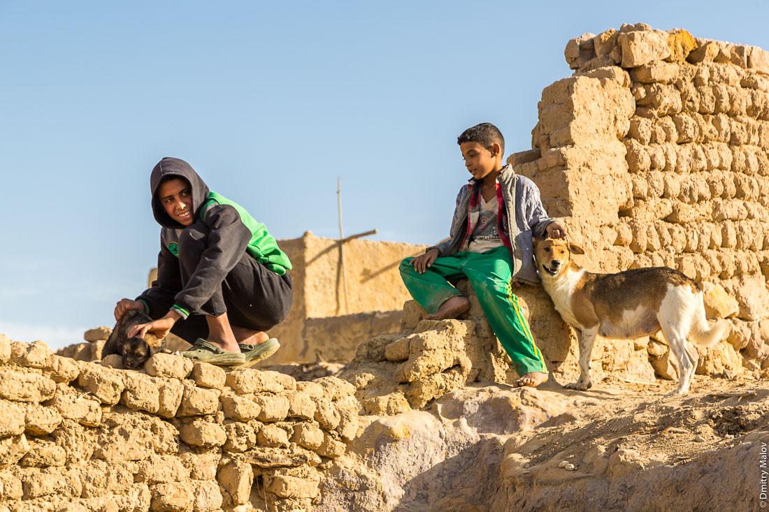 Два арабских мальчика гладят собаку и щенка, Эль-Бавити, Оазис Бахария, Западная пустыня, Сахара, Египет. Two Arab boys petting a dog and a puppy, El-Bawiti, Bahariya Oasis, Western Desert, Sahara, Egypt.