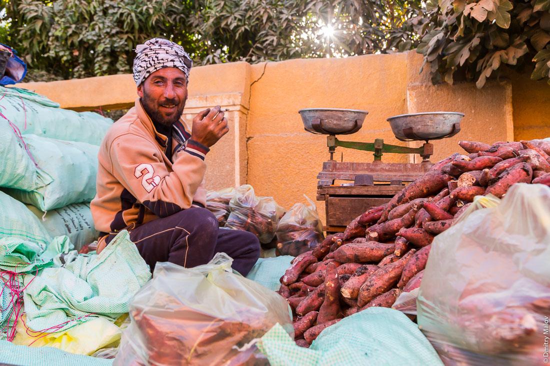 Sweet potato street vendor, el-Bawiti, Oasis of Bahariya, Western Desert, Sahara, Egypt. Торговец сладким кортфолем, Эль-Бавити, Оазис Бахария, Западная пустыня, Сахара, Египет.