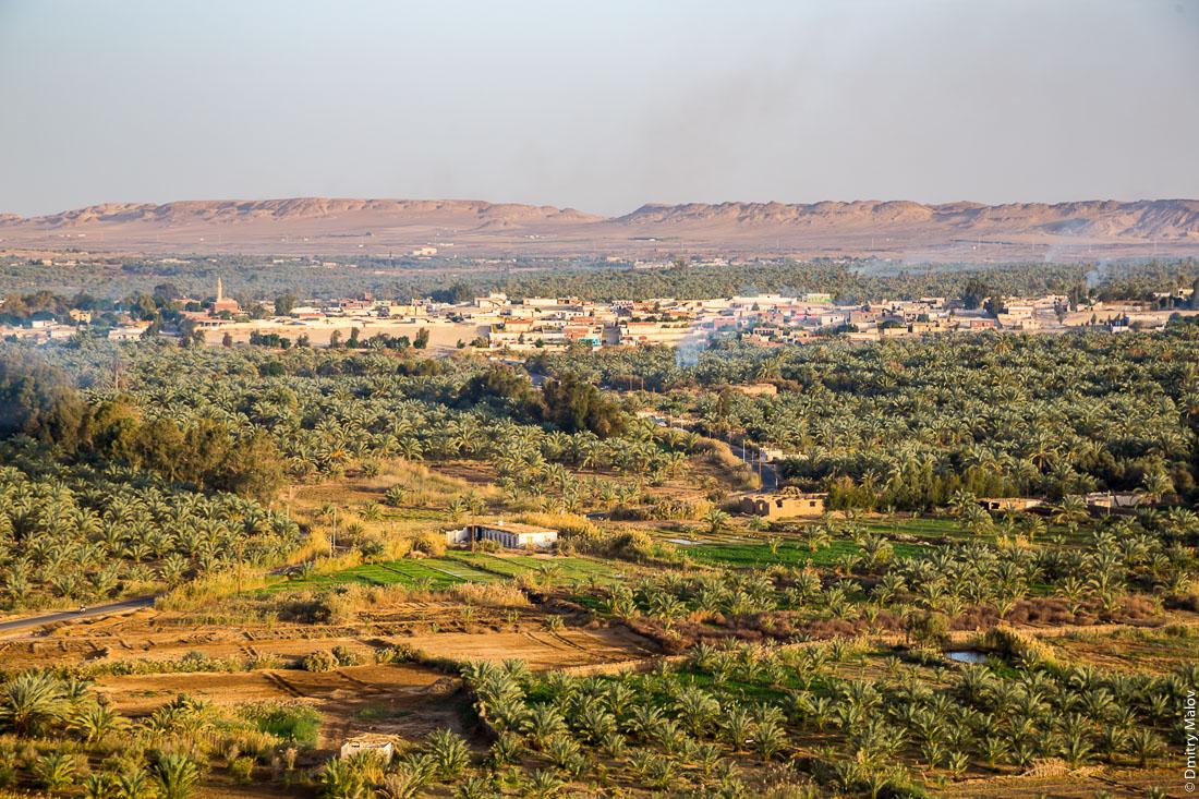 Oasis of Bahariya, Western Desert, Sahara, Egypt. Оазис Бахария, Западная пустыня, Сахара, Египет.