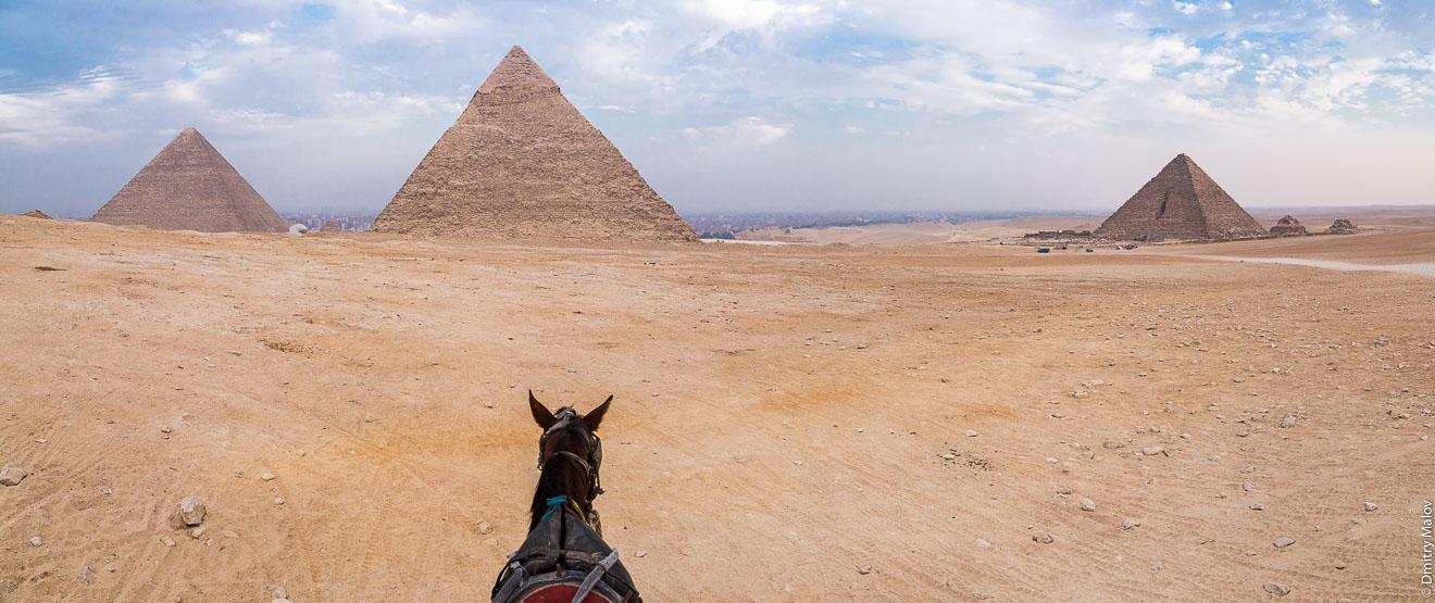 Evening desert and Giza pyramids with a horse on foreground, no tourists, near Cairo, Egypt. Great Pyramid of Giza, Pyramid of Khafre, Pyramid of Menkaure. Pyramids of queens. UNESCO world heritage. Вечерняя пустыня и пирамиды Гизы с лошадью на переднем плане, без туристов, около Каира, Египет. Пирамида Хеопса, Пирамида Хефрена, Пирамида Микерина. Пирамиды королев. Всемирное наследие ЮНЕСКО.