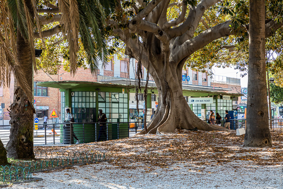 Конструктивистская троллейбусная остановка у главного вокзала Кальяри, Сардиния
