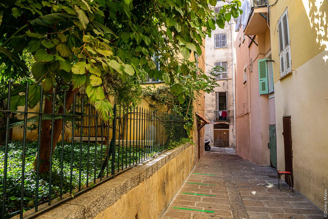 Small street and garden. View of Ajaccio city center, Corsica. Вид улицы с палисадником в центре Аяччо, Корсика