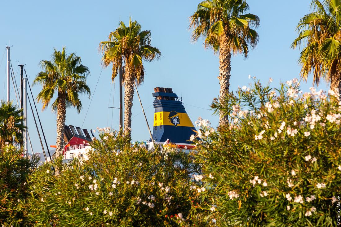 Желто-синяя труба парома Corsica Ferries - Sardinia Ferries c логотипом в виде корсиканского национального символа головы мавра выглядывает из-за пальм в Аяччо, Корсика