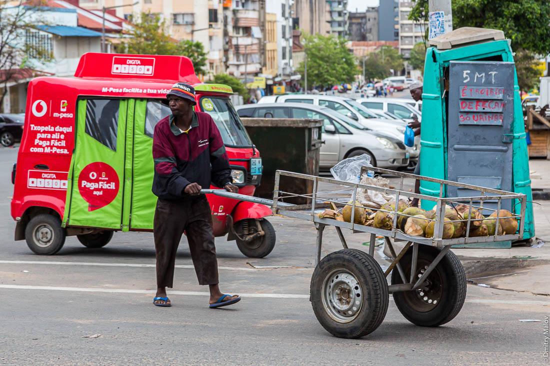 Африканец перевозит кокосы на телеге. Город Мапуто, Мозамбик, Африка