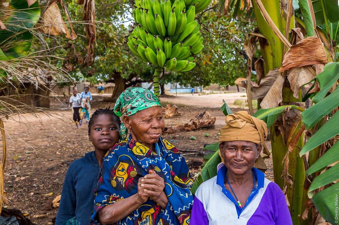 Чёрные женщины-африканки и девочка макуа. В деревне под гроздью бананов, Нампула, Мозамбик, Африка