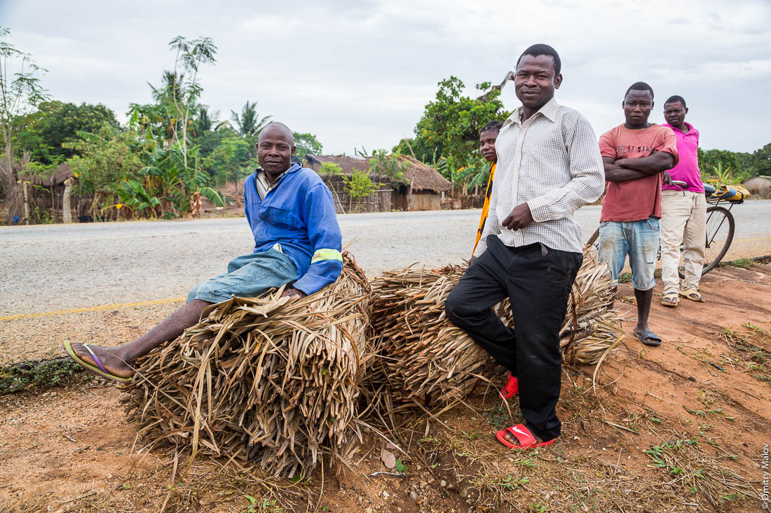 Африканцы, чёрные мужчины — продавцы сена у автотрассы Нампула-остров Мозамбик, Мозамбик, Африка