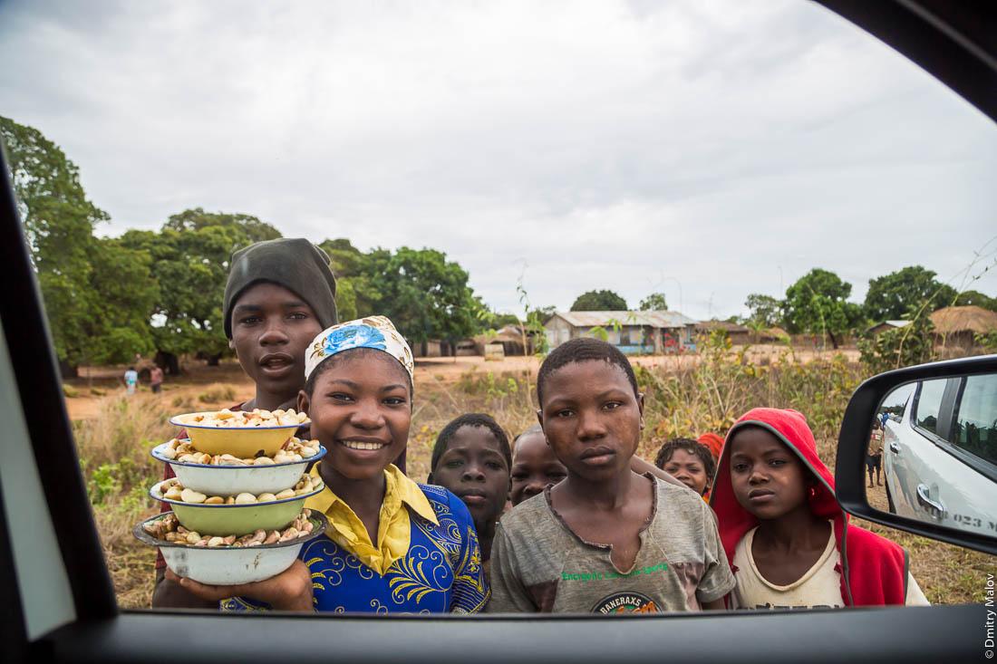 Чёрные подростки, африканские подростки, чёрные парни и девочка народа макуа продают кешью на фоне домов деревни. Дорога Нампула - остров Мозамбик, Мозамбик, Африка