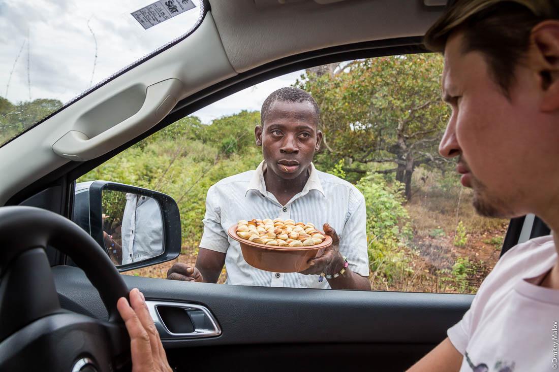 Местный житель, африканец продаёт кешью белому туристу. Дорога Нампула - остров Мозамбик, Мозамбик, Африка