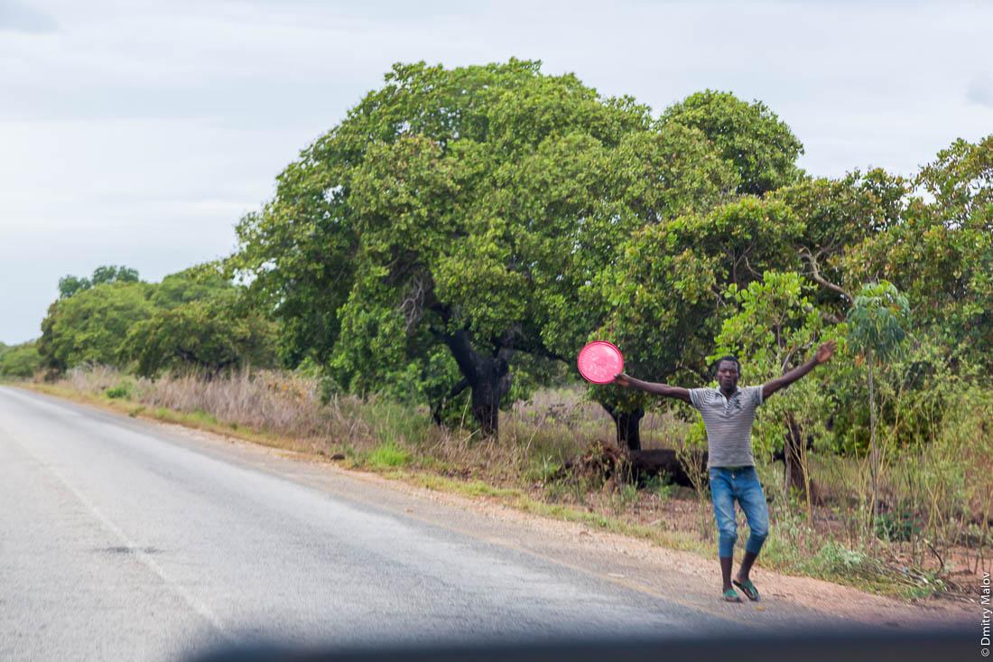 Черный мужчина, африканец, торговец пытается привлечь внимание туристов. Дорога Нампула - остров Мозамбик, Мозамбик, Африка