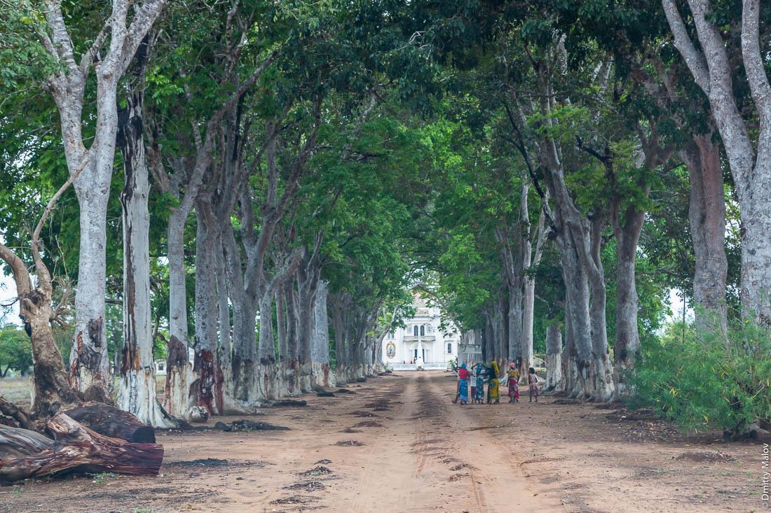 Santuário de S. M. Mãe do Redentor, Meconta, Mozambique. Верующие на заросшей подъездной дороге католического храма. Шоссе Нампула - остров Мозамбик, Мозамбик, Африка