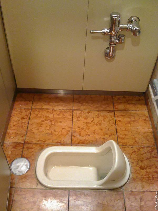 Туалет с чашей генуя, Япония